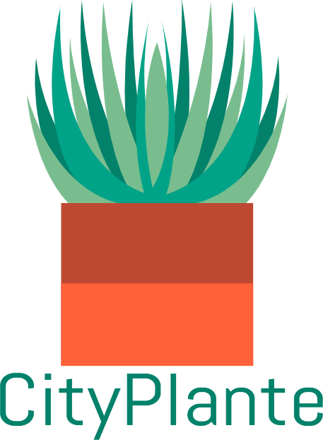 City Plante