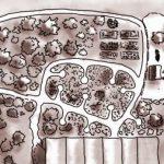 Peut-on vivre de la permaculture ?