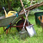 Astuces pour bien entretenir son jardin