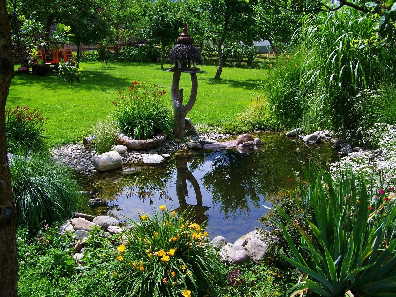 Construire Son Bassin De Jardin construire un bassin au jardin : c'est facile - city plante