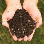 Les fertilisants écologiques