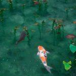 Comment choisir les poissons de bassins de jardin ?