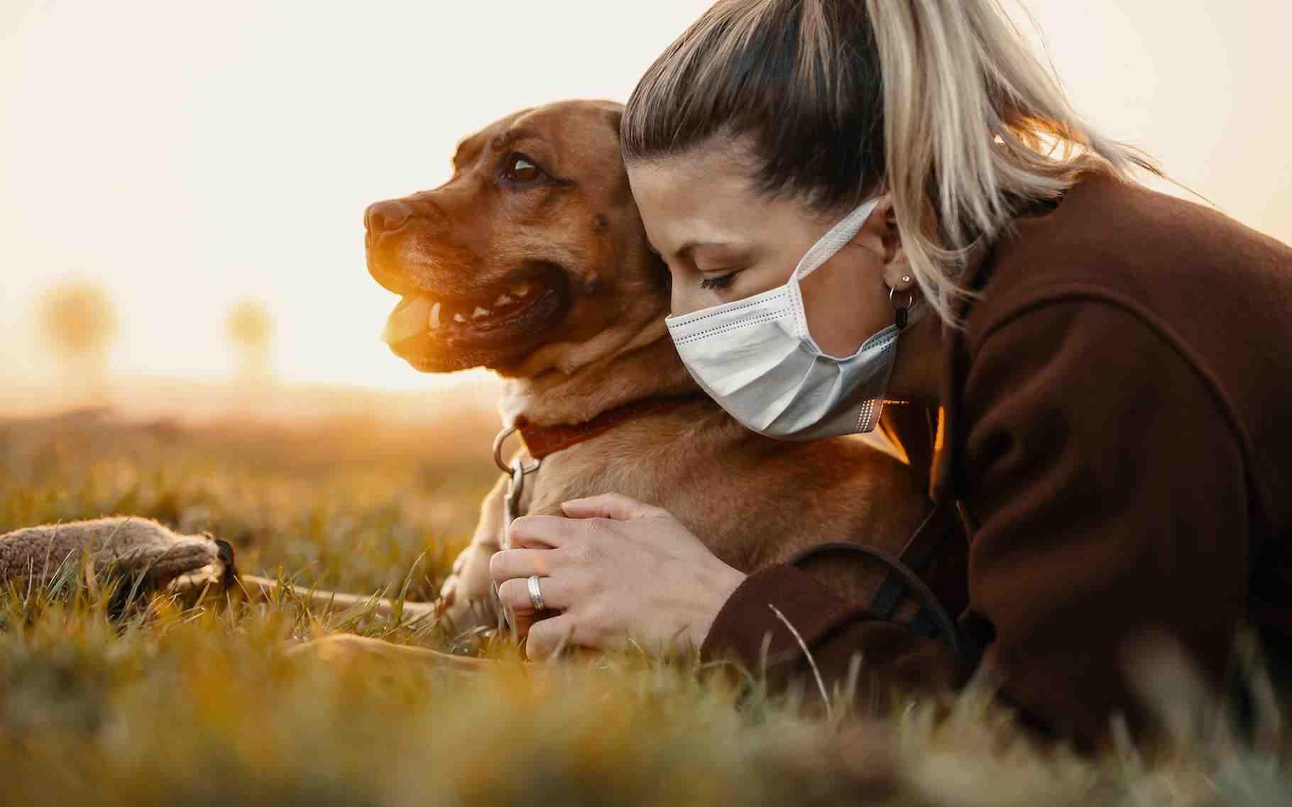 Quel est le chien idéal pour une famille ?