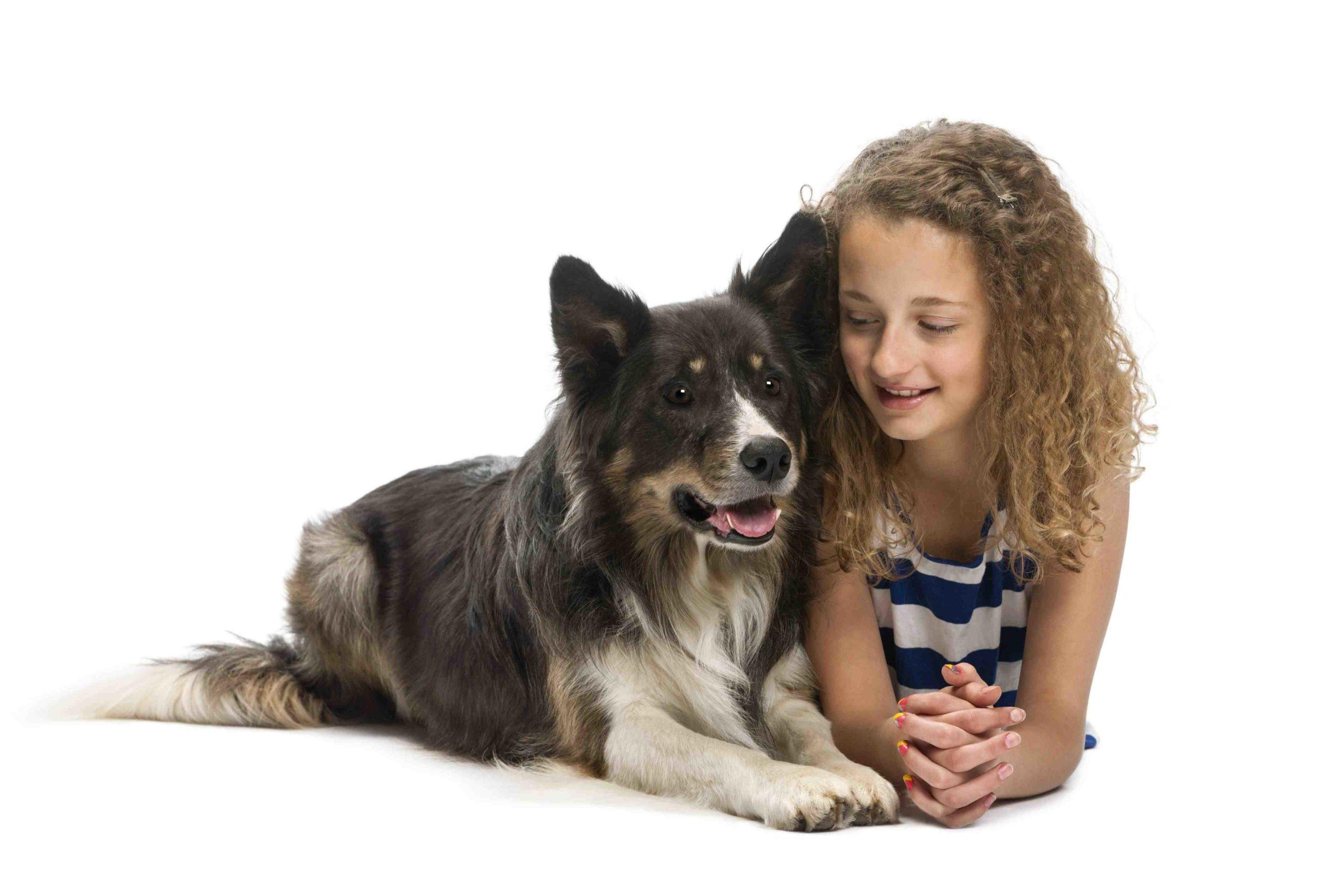 Quel est le chien le plus facile à vivre ?